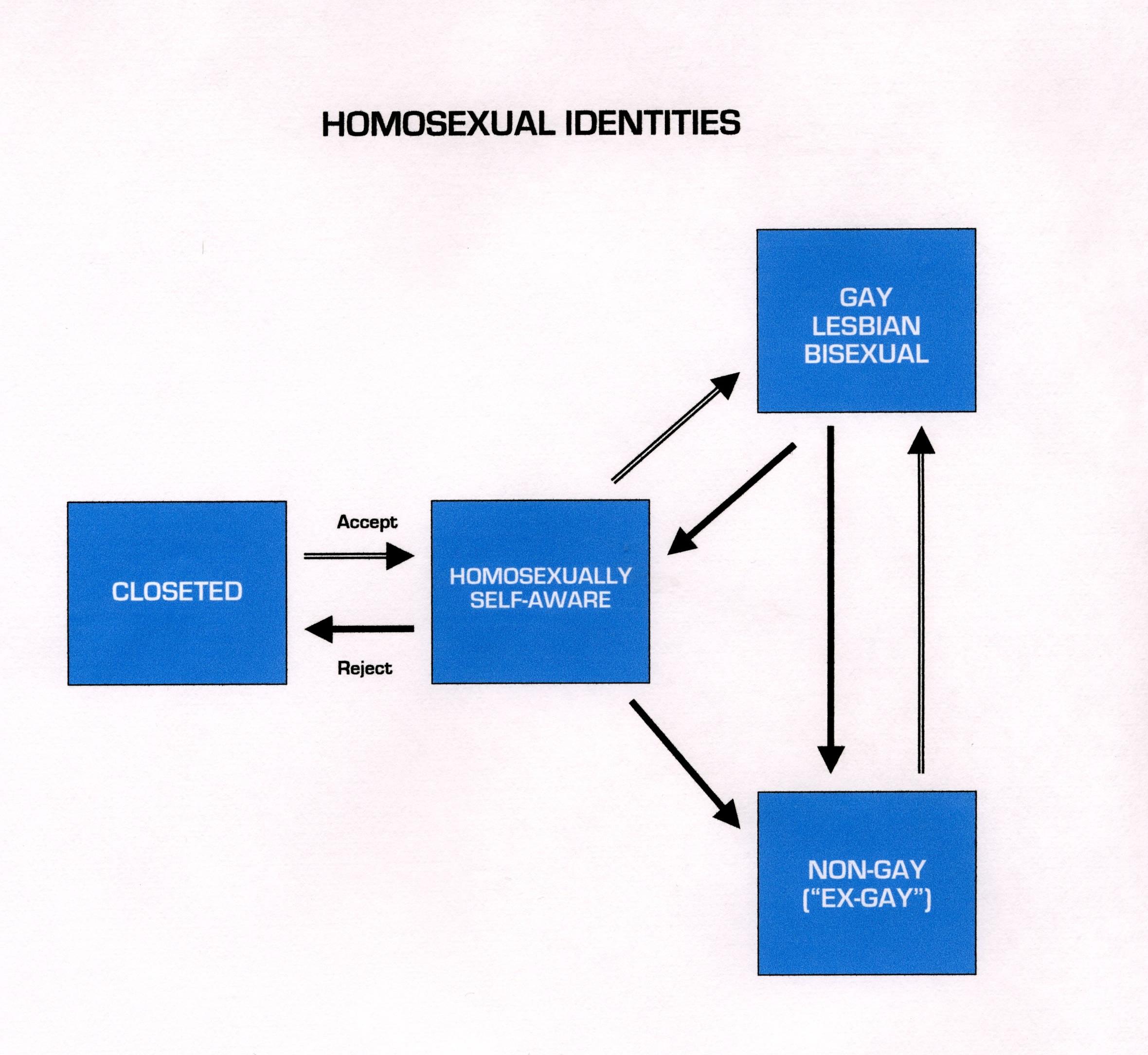 Bisexual Discrimination Essay